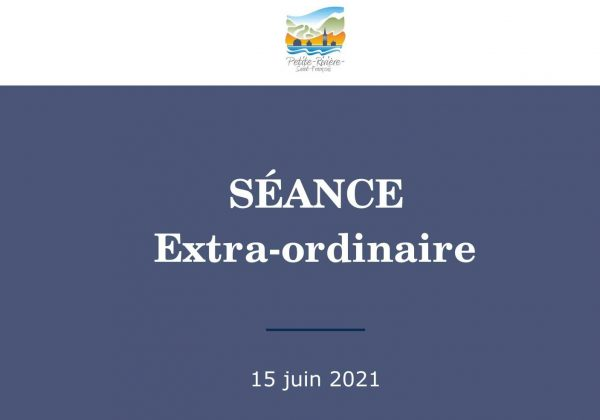 Séance extraordinaire du 15 juin 2021